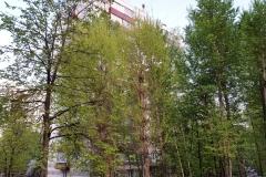 улица Елены Колесовой, 4 Фото 3